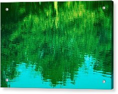 Acrylic Print featuring the photograph Art Of Nature by Kellice Swaggerty