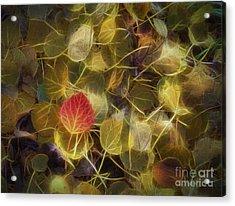 The Aspen Leaves Acrylic Print