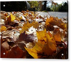 Acrylic Print featuring the photograph The Autumn Carpet by Janina  Suuronen