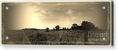 The Back Pasture Acrylic Print