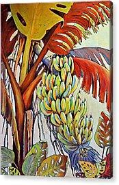 The Banana Tree Acrylic Print by JAXINE Cummins