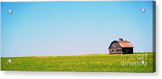 Acrylic Print featuring the photograph the Barn by Marianne NANA Betts