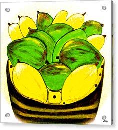 The Basket Acrylic Print by Lorna Maza