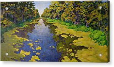 Acrylic Print featuring the painting The Bayou by Andrew Danielsen