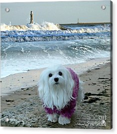 Acrylic Print featuring the mixed media The Beach In Winter by Morag Bates