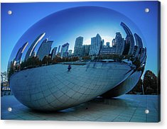 The Bean Acrylic Print by Jonah  Anderson