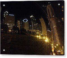 Acrylic Print featuring the photograph The Bean by Tiffany Erdman