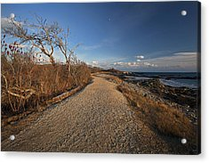 The Beaten Path Acrylic Print by Eric Gendron
