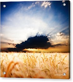 The Beautiful Sunset Acrylic Print by Boon Mee
