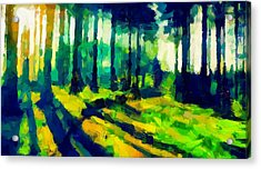 The Beautiful Trees Tnm Acrylic Print by Vincent DiNovici