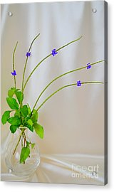 The Beauty In Wildflowers Acrylic Print