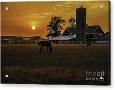 The Beauty Of A Rural Sunset Acrylic Print by Mary Carol Story