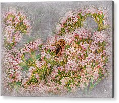 The Bee Acrylic Print by Hanny Heim