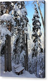 The Bench In Winter Acrylic Print by Jim Sauchyn