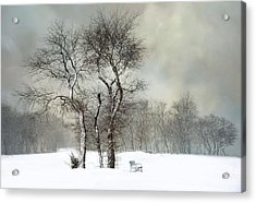 Acrylic Print featuring the photograph The Bench by Robin-Lee Vieira