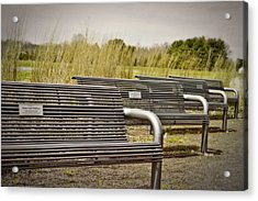 The Benches Acrylic Print by Tom Gari Gallery-Three-Photography