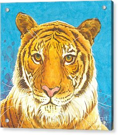 The Bengal Tiger Acrylic Print by Joyce Hensley