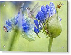 The Best Way To Keep Love Is To Give It Wings Acrylic Print by Bonnie Barry