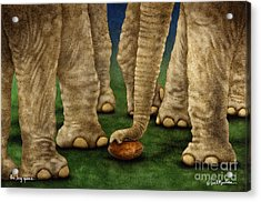 The Big Game... Acrylic Print by Will Bullas