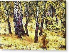 The Birch Forest Acrylic Print by Odon Czintos