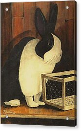 The Black And White Dutch Rabbit  2 Acrylic Print