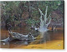 The Black Water River Acrylic Print by JC Findley