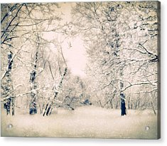 The Blizzard Acrylic Print by Jessica Jenney