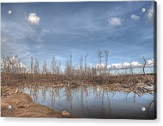 The Blue Water Desert Acrylic Print by Imago Capture