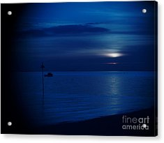 The Blues Acrylic Print by Vicki Spindler