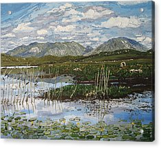 The Bog Road Roundstone Connemara Acrylic Print by Diana Shephard