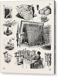 The Brazilian Silk Worm Exhibit, Philadelphia Exhibition Acrylic Print by Brazilian School