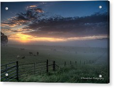 The Break Of Day Acrylic Print by Paul Herrmann