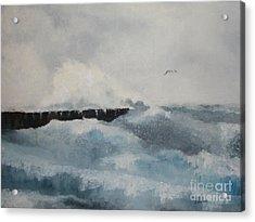 The Breakwater Acrylic Print by Steve Knapp