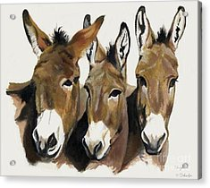 The Brothers Three Acrylic Print by Suzanne Schaefer