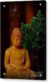 The Buddha Knows Acrylic Print by Paul Ward