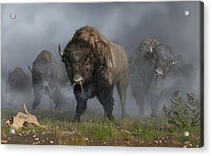 The Buffalo Vanguard Acrylic Print by Daniel Eskridge