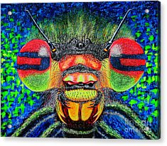 The Bug Acrylic Print by Viktor Lazarev