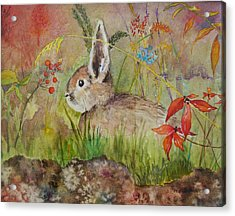 The Bunny Acrylic Print by Mary Ellen Mueller Legault