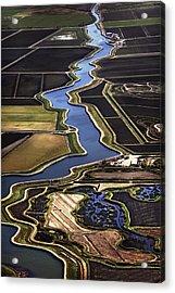 The California Delta Acrylic Print by Adrian Mendoza