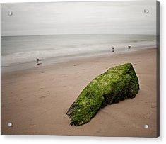 The Calm Acrylic Print by Michael Murphy