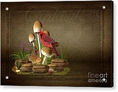 The Cardinal Acrylic Print