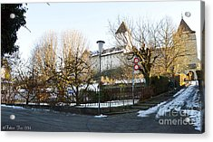 Acrylic Print featuring the photograph The Castle In Winter Light by Felicia Tica