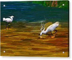 The Catch Acrylic Print by Angela A Stanton