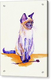 The Catmint Mouse Hunter Acrylic Print by Debra Hall