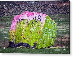 The Chameleon Acrylic Print