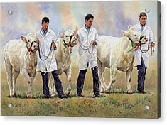 The Champions Acrylic Print by Anthony Forster