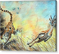 The Chase Is On Acrylic Print by Nathan Cole