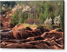 Acrylic Print featuring the photograph The Cheltenham Badlands by Gary Hall