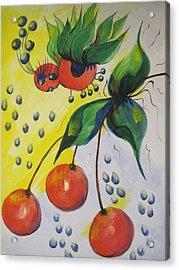The Cherry Fairy Acrylic Print by Shirley Watts