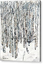 The Clearing Acrylic Print by David Dossett